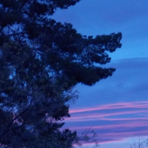 Sunrise In Tucson